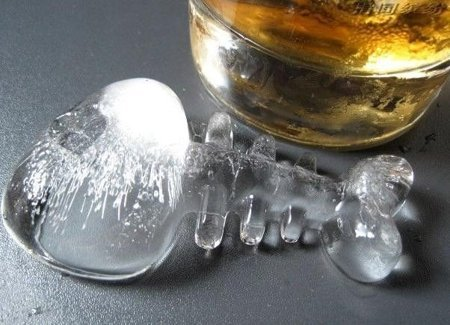 Ice tray FISHBONES - BLACK